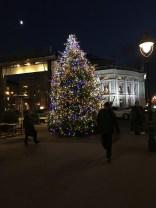 Beautifil christmas tree at Universitätsring