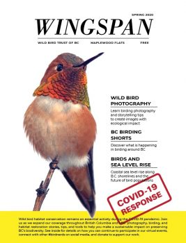 wingspan spring 2020 -cover-2