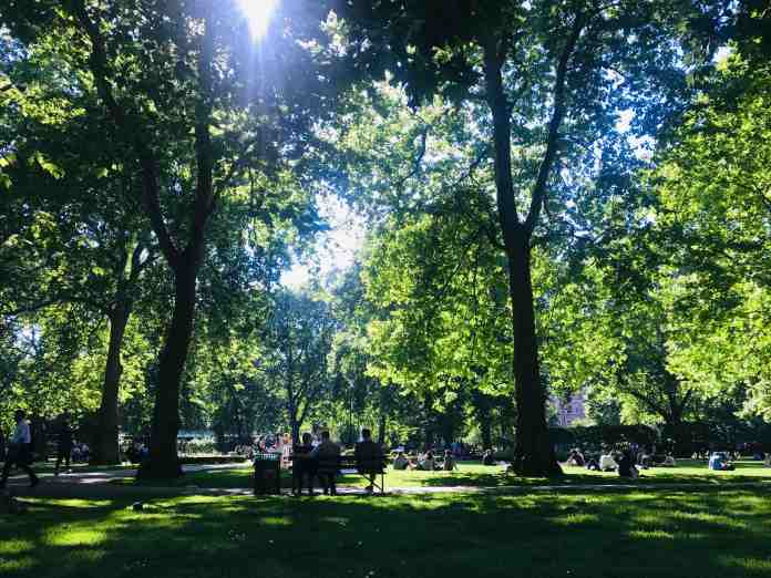 parks are essential green spaces amongst urban sprawl