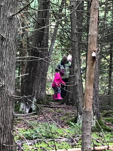 Family Forest Bathing