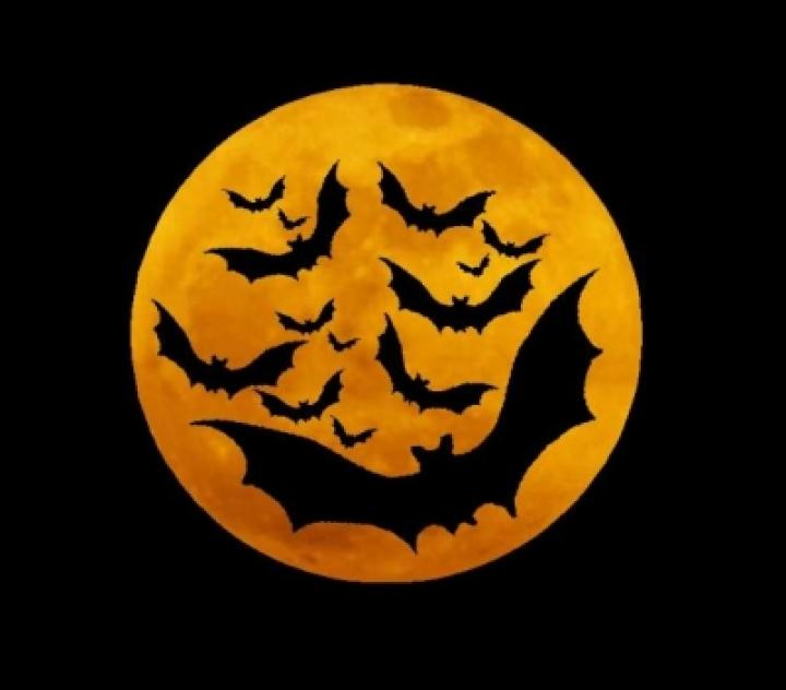 Halloween Is Just Around The Corner Gear Up With Student