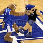 Kentucky Mascots - photo by Walter Cornett   WildcatWorld.com