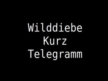 Wilddiebe News- ticker