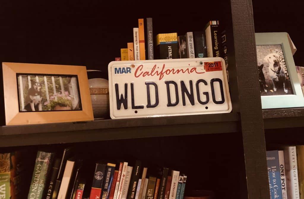 Wild Dingo | writer | designer | storyteller
