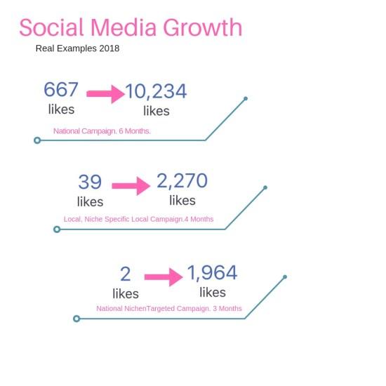 wilder marketing social media growth