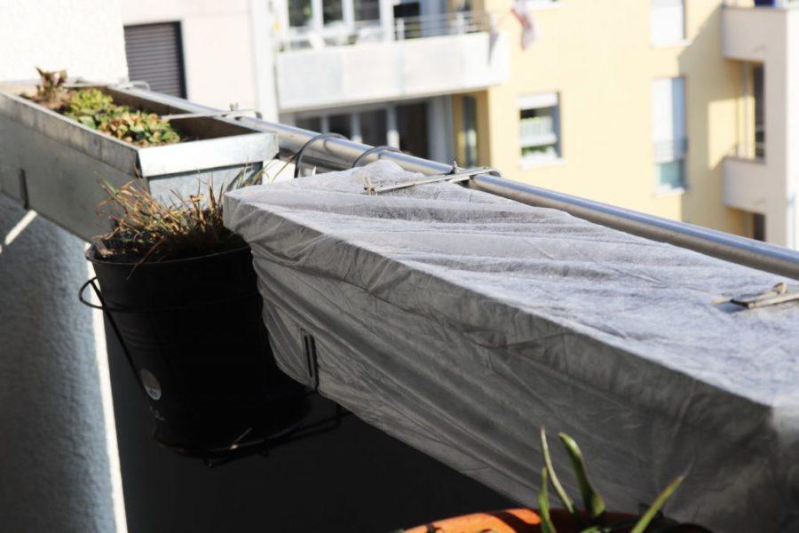 Ansaaten von einjährigen Wildblumen direkt in die Balkonkästen auf dem Wilden Meter: Vlies als Schutz vor Vogelfrass.