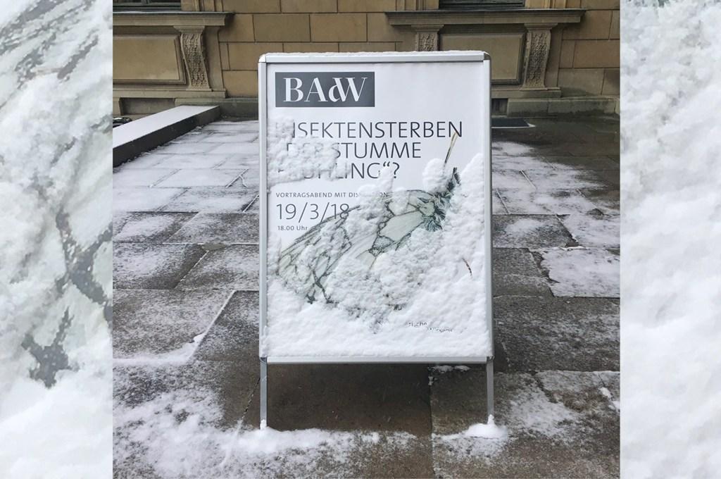 Bayerische Akademie der Wissenschaften. Veranstaltung vom 19. März 2918. Insektensterben: Der stumme Frühling?