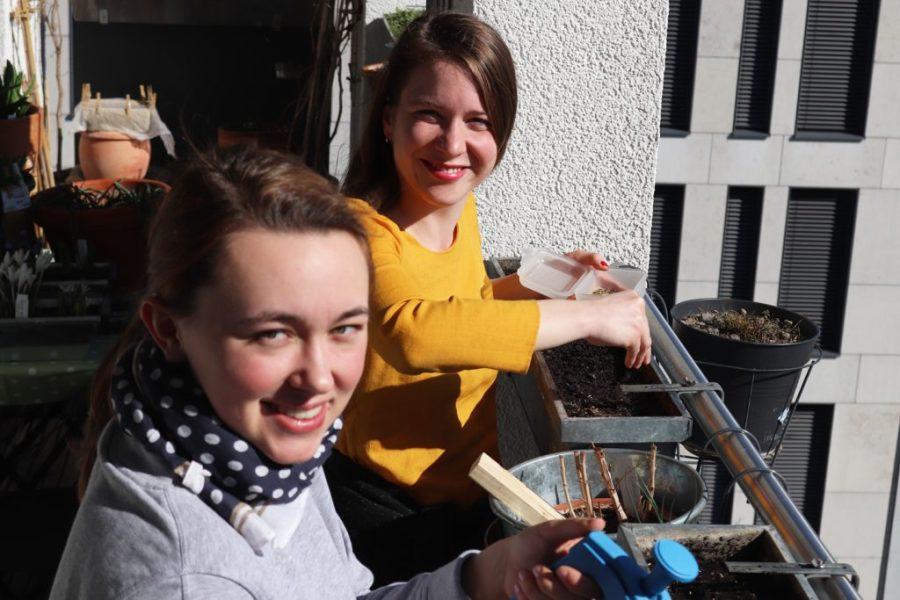 Rückblick: Aussaat der einjährigen Wildblumen am 17. März mit Katharina Demel und Nichte Freya