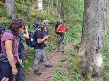 European Wilderness Diary-20320