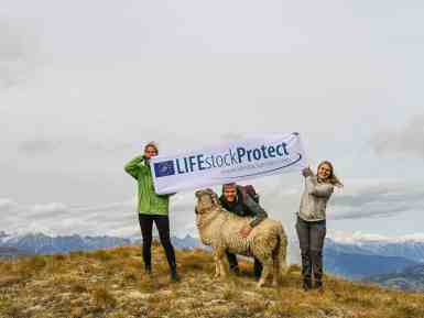 LIFEstockProtect by European Wilderness Society