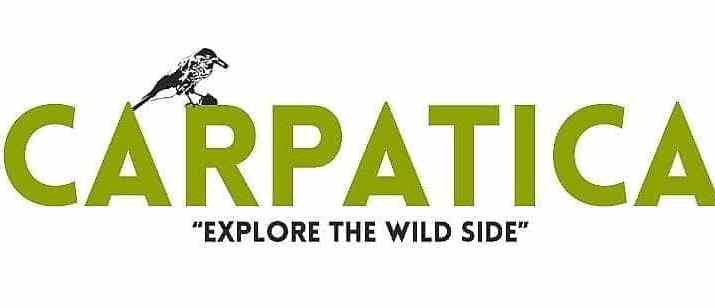 Carpatica Travel