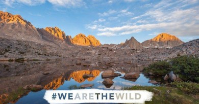 wilderness-act-50th-anniversary.jpg - © European Wilderness Society CC BY-NC-ND 4.0