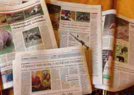 Media Hype, Politicians in panic, Fake news in abundance!