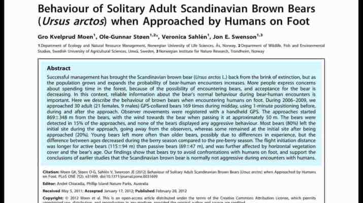 Behaviour of Solitary Adult Scandinavian Brown Bears (Ursus arctos) when Approached by Humans on Foot