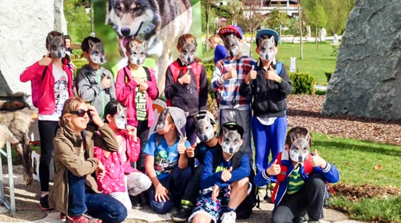 Wolves School Festival Hohe Tauern Uttendorf 8.jpg - © European Wilderness Society CC BY-NC-ND 4.0