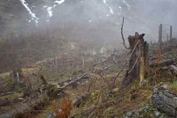 Nationalpark Kalkalpen