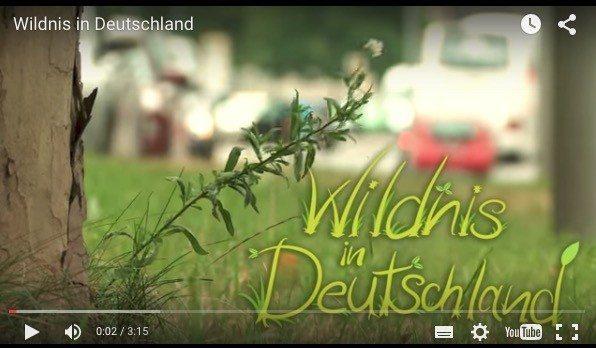 WIlderness film Germany