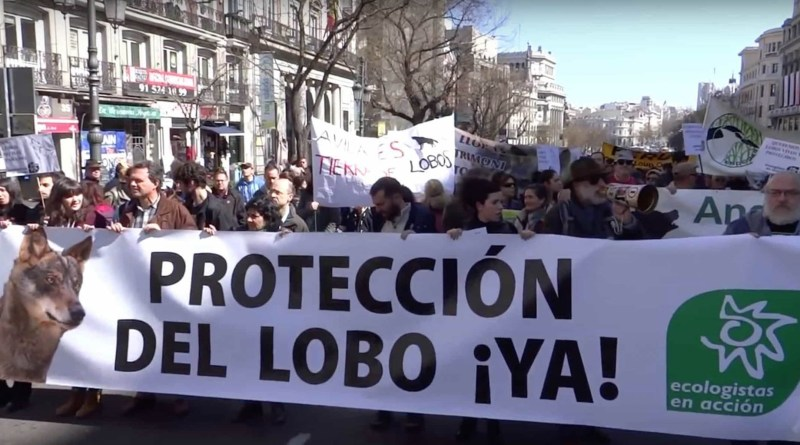 Wolf-protest-Spain.jpg - © European Wilderness Society CC BY-NC-ND 4.0