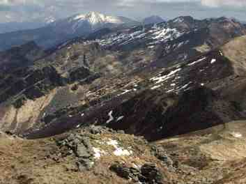 Ecological connectivity between Alps and Apennines