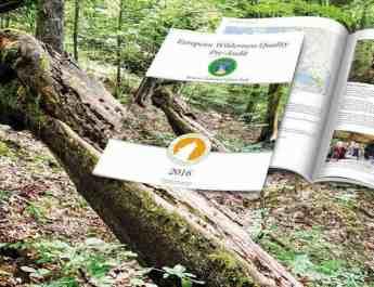 Synevyr_1078x516.jpg - European Wilderness Society  - CC NonCommercial-NoDerivates 4.0 International