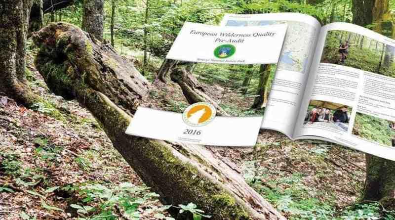Synevyr_1078x516.jpg - © European Wilderness Society CC BY-NC-ND 4.0