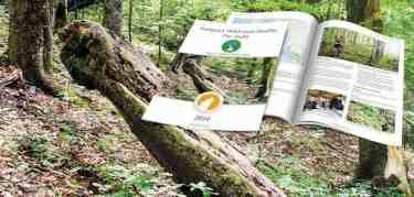 European Wilderness Quality Standard Pre-Audit Report Synevyr Wilderness