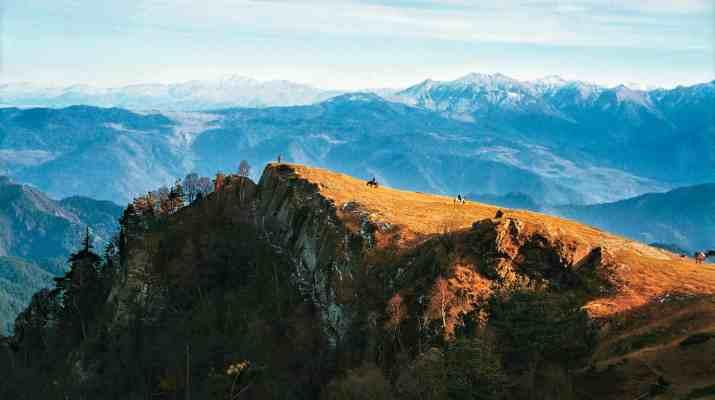 EWS - Borjormi-Kharagauli Wilderness -06352_