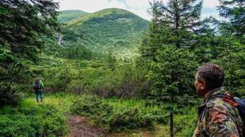 Carpathian National Park 1262