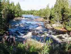 Fulufjället National Park--3