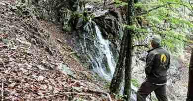 Kalkalpen Wilderness 129-2.jpg - © European Wilderness Society CC BY-NC-ND 4.0