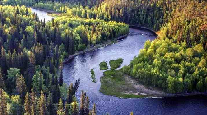 EWS - Oulanka Wilderness -09068_