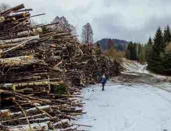 EWS - Slovakia, Muranska Planina -04242_