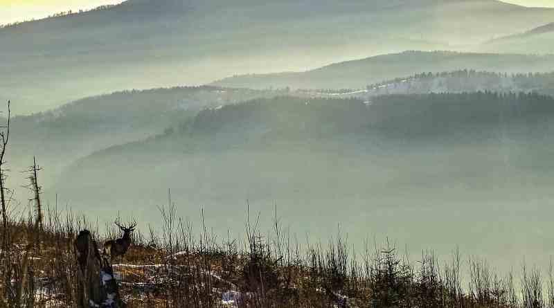 Slovakia, Muranska Planina 0816.JPG - © European Wilderness Society CC BY-NC-ND 4.0