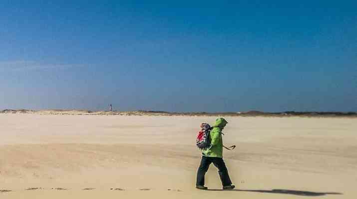 WILDCoast Amrum North Sea-4560.jpg - European Wilderness Society - CC NonCommercial-NoDerivates 4.0 International