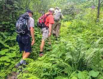 Hohe Tauern WIlderness Exkursion 2017 0051.jpg - European Wilderness Society - CC NonCommercial-NoDerivates 4.0 International