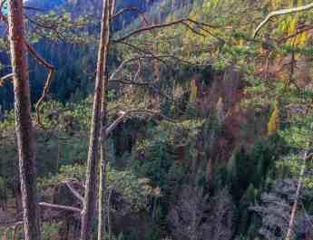 Slovensky Raj, Slovakia - European Wilderness Society - 00075-97.jpg - European Wilderness Society - CC NonCommercial-NoDerivates 4.0 International