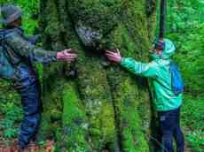 Uholka Wilderness Exchange Programme - 00603