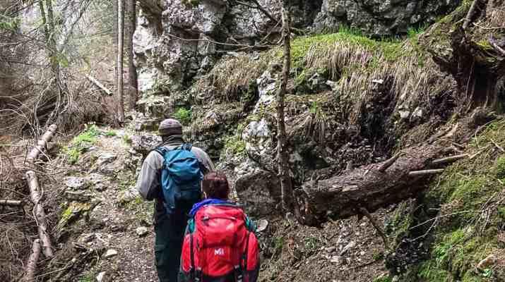 Dutch Film team in the Tatras, Slovakia 0010.jpg - © European Wilderness Society CC BY-NC-ND 4.0