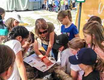 Wolves School Festival Hohe Tauern Uttendorf 11.jpg - © European Wilderness Society CC BY-NC-ND 4.0