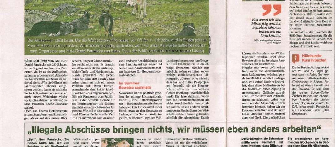 South Tyrolean Government investing up to €1 million in Sheep Herd Management
