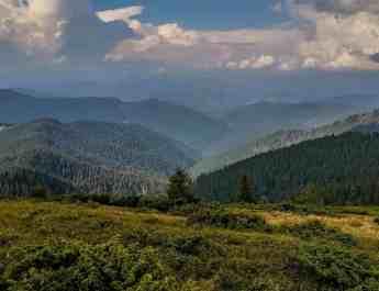Maramarosh Wilderness Carpathian Biosphere Reserve-19590.jpg - European Wilderness Society  - CC NonCommercial-NoDerivates 4.0 International