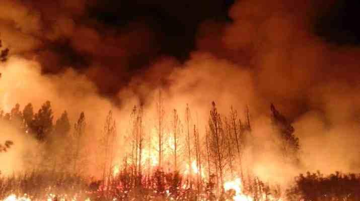 Wildfires rage across Europe