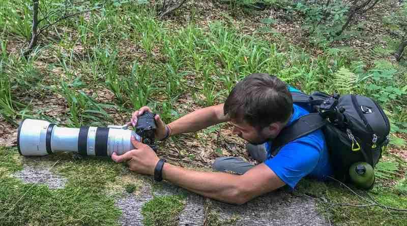 WILDArt Synevyr - 17354.JPG - © European Wilderness Society CC BY-NC-ND 4.0