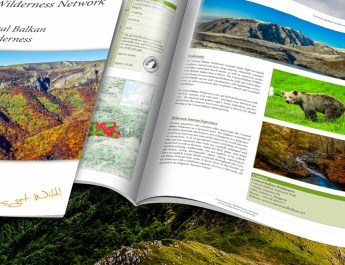 Eropean Network Partner Briefs © All rights reserved