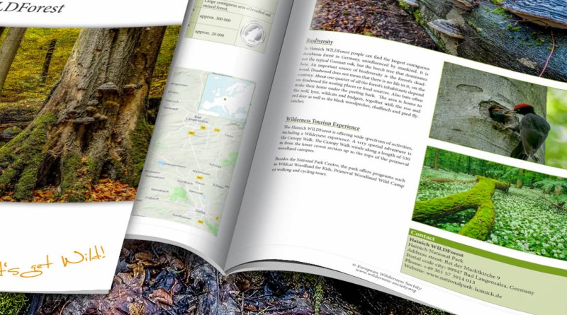 Hainich-WILDForest_Brief_2200x1057.jpg - © European Wilderness Society CC BY-NC-ND 4.0