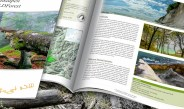 Kalkalpen Wilderness and WILDForest – New Publications!