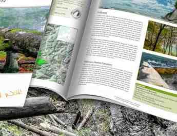 Kalkalpen_WILDForest_Brief_2200x1057.jpg - European Wilderness Society - CC NonCommercial-NoDerivates 4.0 International