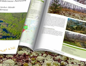 Konigsbrucker_Heide_Wilderness_Brief_2200x1057.jpg - European Wilderness Society - CC NonCommercial-NoDerivates 4.0 International