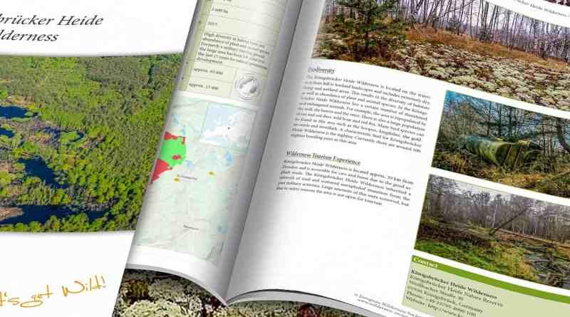Konigsbrucker_Heide_Wilderness_Brief_2200x1057.jpg - © European Wilderness Society CC BY-NC-ND 4.0