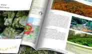 Küre Wilderness – New Publication!
